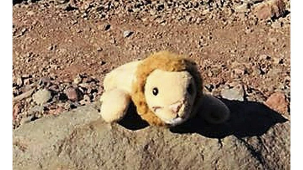 Oregon woman reunites girl with toy lion lost on remote hike