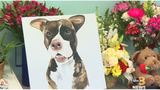 Five-day open house memorial for beloved dog 'Tommie' starts Tuesday