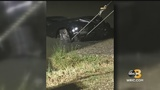 Petersburg Police investigating after stolen car pulled out of Wilcox Lake
