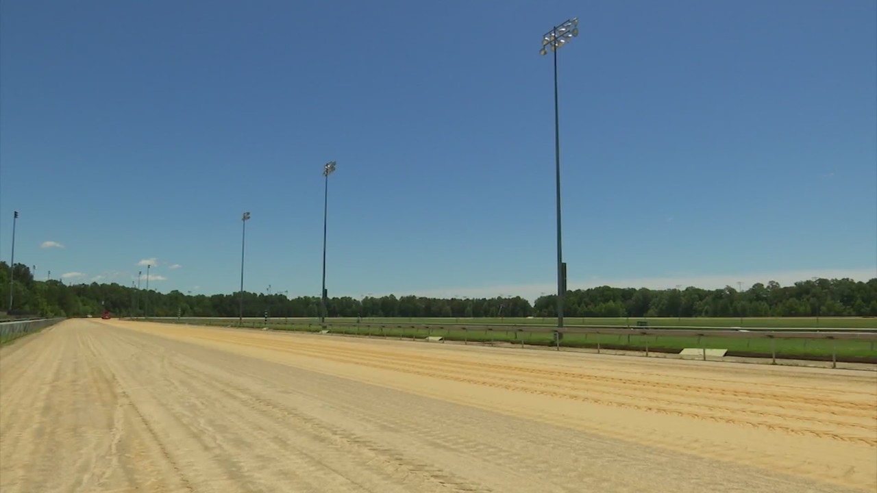 Want to see live horse racing at Colonial Downs this summer? Free tickets up for grabs this weekend